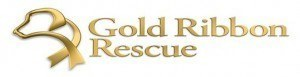 Gold Ribbon Rescue logo